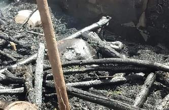 نفوق 4 رءوس ماشية فى حريق بحظائر مواش بمنشأة سلطان بالمنوفية| صور