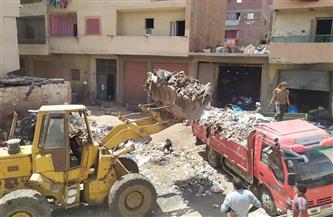 محافظة الجيزة تكثف حملاتها لرفع مخلفات القمامة بمناطق الزرايب بنطاق العجوزة وكرداسة  صور