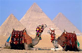في اليوم العالمي للتراث.. تعرف على قائمة الآثار المصرية المصنفة على قائمة التراث العالمي| صور