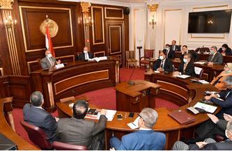 """وزير الري يكشف لـ""""الشيوخ"""" خطة مواجهة التحديات المائية"""
