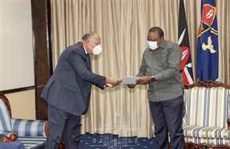 وزير الخارجية: مصر تهتم بدعم المشروعات التنموية في كينيا بالمجالات التي تمثل أولوية