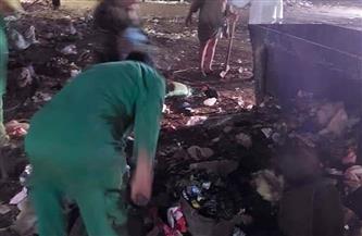 رفع 40 طن قمامة في حملات نظافة بعدد من قرى مركز الباجور بالمنوفية | صور