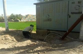 رفع 15 طن مخلفات وقمامة وتركيب أعمدة إنارة بمركز سوهاج| صور