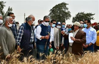 محافظ الفيوم يتفقد أعمال حصاد «القمح» بالناصرية | صور
