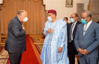  وزير الخارجية يسلم رئيس النيجر رسالة من الرئيس السيسي | صور