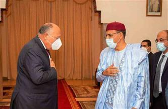 ننشر تفاصيل لقاء وزير الخارجية ورئيس النيجر ورسالة الرئيس السيسى له | صور