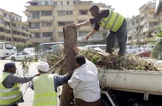 حي العجوزة يشن حملة نظافة بالشوارع والميادين | صور
