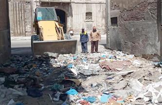 رفع 28 طن مخلفات وأتربة من مناطق غرب الإسكندرية   صور