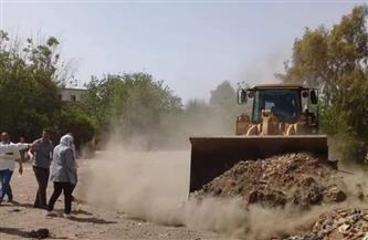 رصف شارع نقطة شرطة الماى وصيانة أعمدة الإنارة بطريق (دكما - شبرا باص) بالمنوفية