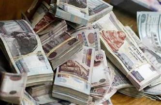 ضبط شخص للاستيلاء على 7 ملايين جنيه من مواطنين بزعم استثمارها بتجارة الأعلاف
