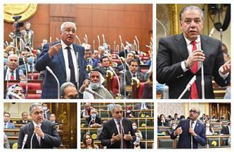 لقطات من البرلمان.. نائب يطالب باختبار خريجى الهندسة قبل ممارستهم للمهنة   صور