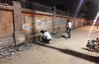 حي الدقي ينفذ حملة لترميم وتلوين الأسوار القديمة | صور