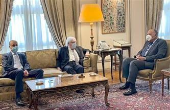 وزير الخارجية يؤكد موقف مصر الداعم للحل السياسي للأزمة اليمنية | صور