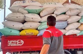 ارتفاع الكميات الموردة من القمح لشون كفر الشيخ إلى 36863 طنا | صور