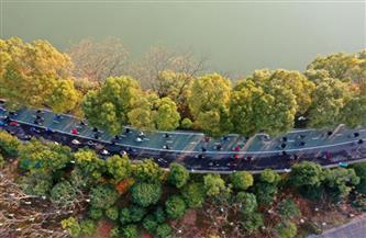 الصين تسلط الضوء على التنمية الخضراء في تقدمها المستقبلي