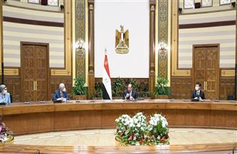 خبراء يابانيون خلال لقائهم الرئيس: تقييمات الأداء عكست نجاح منظومة التعليم اليابانية في المدارس المصرية