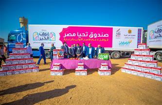صندوق تحيا مصر يوفّر 80 طن مواد غذائية ودواجن لـ 6 آلاف أسرة بالشرقية | صور