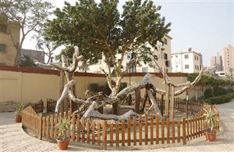 """نائب محافظ القاهرة يكلف بسرعة إنهاء أعمال تطوير منطقة """"شجرة مريم"""""""