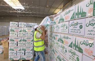 توزيع كراتين سلع غذائية على الأسر الأكثر احتياجا فى محلة مسير والعمة بمركز قطور | صور