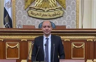 برلماني: مصر حققت طفرة غير مسبوقة في التنمية الشاملة بسيناء