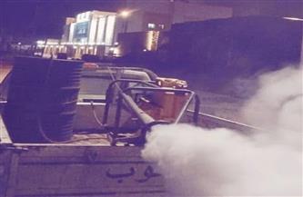 حملة لإبادة الحشرات الطائرة بمنطقة مستشفى 30 يونية جنوب بورسعيد