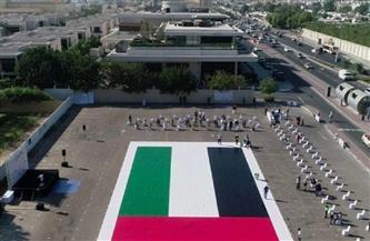 الإمارات تدخل جينيس بأكبر لوحة فسيفسائية للعلم
