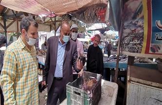 ضبط أغذية  فاسدة في حملة تفتيشية على الأسواق في المطرية |صور