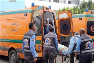 إصابة شخصين في حادث تصادم بين ملاكي وتوكتوك في مركز شربين