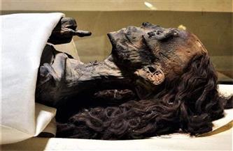 """المومياء صاحبة الشعر الطويل.. """"الملكة تى"""" زوجة المحارب وأم الفيلسوف التي حيرت العالم"""