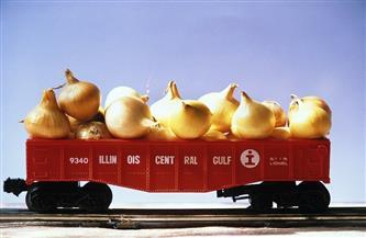 من حقول الصعيد لميناء الإسكندرية.. قصة  قطار البصل المصري فى الحرب العالمية الثانية| صور