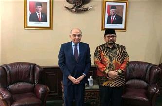 سفير مصر في إندونيسيا يناقش مع وزير الشئون الدينية جهود البلدين لمكافحة الخطاب المتشدد وتعزيز الوسطية