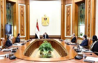 الرئيس السيسي يوجه بالاستمرار في جهود تحقيق توطين الصناعة وتوفير المناخ الداعم