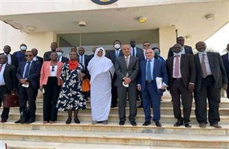 سفير مصر بإثيوبيا يشارك مجلس السلم والأمن الإفريقي في زيارته إلى السودان| صور