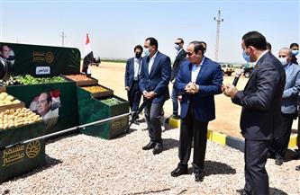 """الرئيس السيسي: مشروع """"مستقبل مصر"""" يستهدف زيادة الرقعة الزراعية وتحقيق الأمن الغذائي"""