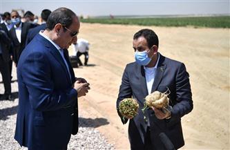 في 13 نقطة.. تفاصيل مشروع «مستقبل مصر» للإنتاج الزراعي بالصحراء الغربية