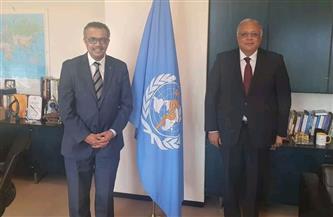 السفير أحمد جمال الدين يناقش تعزيز التعاون بين مصر ومنظمة الصحة العالمية