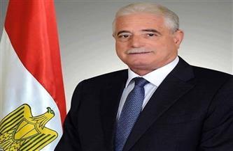 محافظ جنوب سيناء يبحث مع وزيرة التجارة خطط تنمية المناطق الصناعية