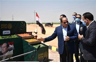 «النواب والشيوخ» عن «مستقبل مصر»: حلم قومى حققه الرئيس السيسى للمصريين