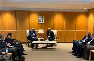 وزير الخارجية يصل بيروت ووهبة على رأس مستقبليه  صور
