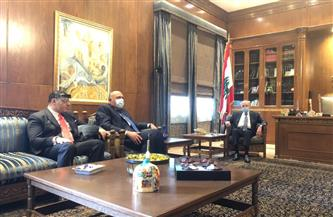 وزير الخارجية يبحث مع نبيه بري آخر مستجدات الوضع في لبنان