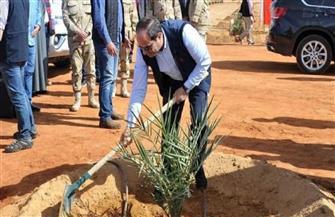 «الدلتا الجديدة».. مستقبل جديد للزراعة غرب المحروسة