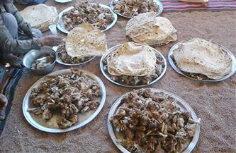 «الجريشة».. «الفراشيح».. «فتة العفيج».. أشهر الوجبات على موائد إفطار بدو جنوب سيناء