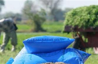 الزراعة: انتظام صرف الأسمدة الصيفية للمزارعين