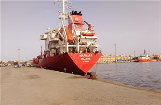 تداول 21 سفينة وشحن 4 آلاف طن صودا كاوية بموانئ بورسعيد