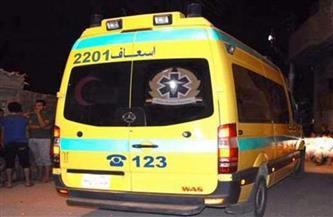 إصابة 5 مواطنين فى حادث بمركز بدر فى البحيرة