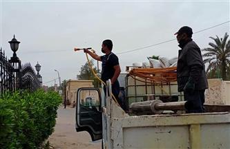 تطهير وتعقيم عدد من شوارع العامرية بالإسكندرية |صور