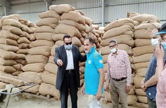 وكيل وزارة الزراعة بدمياط يتفقد شونة كفر سعد لمتابعة توريد الأقماح المحلية | صور