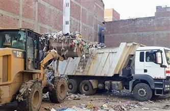 """رفع 29 طن مخلفات وتراكمات من طرق وشوارع """"السنطة"""" بالغربية"""