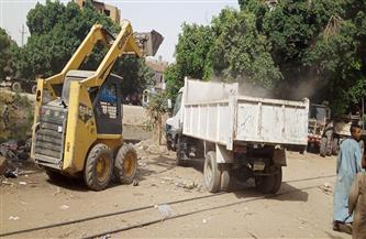 رفع 7 أطنان من الأتربة والمخلفات الصلبة بمدخل قرية الدبابية والمعلا جنوب الأقصر
