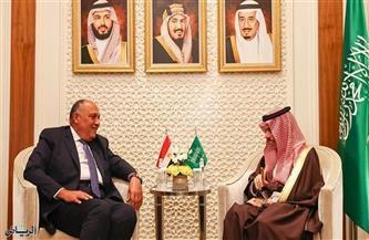 وزيرا خارجية مصر والسعودية يؤكدان رفضهما لكافة المُمارسات غير القانونية التي تستهدف النيل من الحقوق الفلسطينية